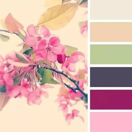 PS后期系列 樱花照片的八种配色方式